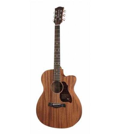 Richwood A-50-CE Master Series handmade auditorium OOO guitar